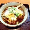 食事処 平和 - 料理写真:天ぷらそば
