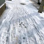 ラゥメン大地 - 歩道雪だらけ