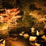 121225897 - ライトアップされた紅葉が池に写って綺麗どすなぁ♡