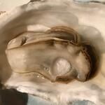 ユイットル - 蒸牡蠣