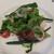 ウサギ&かめ - 料理写真:前菜