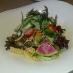 イタリア厨房 KUNISHIMA - フレッシュ野菜のグリーンサラダ