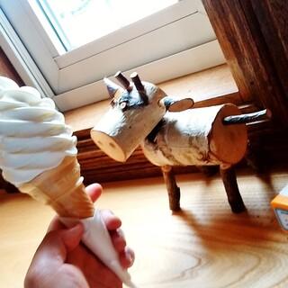 ミルクホール - 料理写真:ノースプレインファーム ミルクホール@興部町 ソフトクリーム・レギュラー(300円)