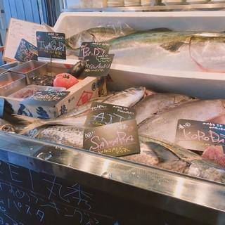 漁師直送の採れたて鮮魚と毎日市場にて直接買い付け!!
