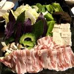 琉球ムーガタ鍋 - すき焼き
