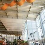 ザ・フィッシュ - 店内は天井が高くて開放的