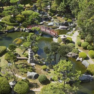 こころ和む美松の回廊庭園