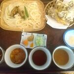 水沢うどん 松島屋 - 薬味はすり胡麻、紅葉おろし、あと辛味と微かな柚子の風味がするもの。天ぷらの下の丸いお皿は天ぷら用のお塩。