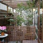 クレープリー カフェ 樹水 - お店の窓からは緑で彩られた庭を見ることが出来ます♪