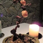 AZUR et MASA UEKI - ナパバレーのワイナリーにちなみ葡萄の木の盆栽にアップルパイです
