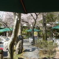 オーベルジュ・オー・ミラドー - ガーデンのお席では、季節の花も楽しめます。