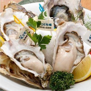 新年会などにおすすめ!仕入れからこだわる旬の牡蠣料理!