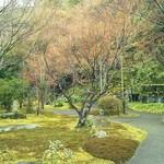 Ristorante Azekura - 美しい庭園