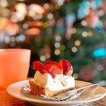 サルバドニカ - 料理写真:後ろにはクリスマスツリーが♡