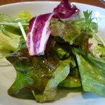 新町バール la cima - ☆食物繊維たっぷりのサラダってお名前ですがどうなんでしょ~☆