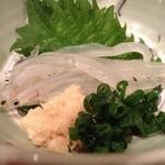 旬楽 飃 - こんな大きな白魚って初めてです。