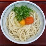 釜揚げうどん 岡じま - 料理写真:明太釜たまうどん