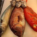 うお輝 - 今日も美味い魚達が来てますよー!!