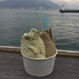 ジェラテリア バンビーニ - 料理写真:ジェラート2種 450円!ピスタチオとほうじ茶