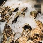 オストレア oysterbar&restaurant - 牡蠣牡蠣牡蠣