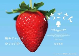 カフェ・イン・ザ・パーク - (1-3月・平日限定) ストロベリーデザートブッフェ〜さがいちごフェア〜