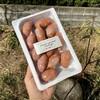 ディーン アンド デルーカマーケットストア - 料理写真:イベリコ豚入り 粗挽きソーセージ \750(8%税込\810)