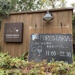 FORESTARIA -