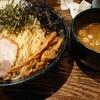 Chuukasobabakuya - 料理写真:全部のせつけ麺大