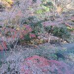 シェラトン都ホテル東京 - その他写真:窓外の景色