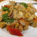 122630956 - 鶏肉とカシューナッツ炒め