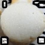 松島蒲鉾本舗 - 長芋でした