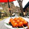 芹生茶屋 - 料理写真: