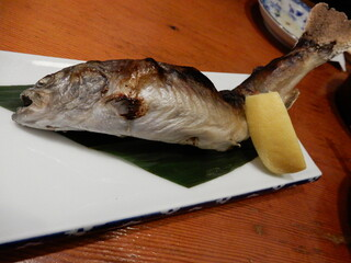 大漁 - 安曇野産岩魚塩焼き