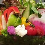 123021401 - 生野菜15種