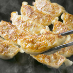FAST OYSTERS -
