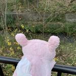 餃子のハルピン - 玉川上水散策ですにゃ。