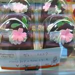 シェノーリ - ガトー・ショコラ