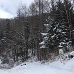 やぶはら高原山の家 - 新雪が積もりました♪雪山ですね