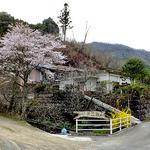 柳瀬温泉 - 小道沿いの味のある看板