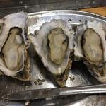 かき小屋 - 形が良い牡蠣を並べてみました