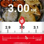Indoresutoranarajin - 辛さは 3.0KM(辛メーター)と判定