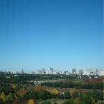 インペリアルラウンジ アクア - ラウンジの窓から見えた日比谷公園の風景です。