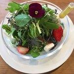 ラク カフェ - 美しいサラダ。