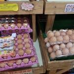 卵の里  地黄卵 -