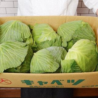野菜&豚肉は国産、ニンニク不使用の餃子は、あっさりと優しい味