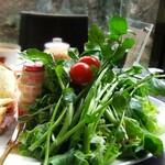 蔦珈琲店 - クレソンのサラダ。そしてヤクルト。