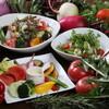炭火焼き鳥 キッチン ひよこ イースト - 料理写真:サラダ