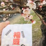 124791435 - 荒子公園ではもう梅の花が!