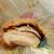 マクドナルド - 料理写真:「31.03」