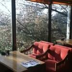 パームス - 店内の写真です。窓から見えているのは桜です!